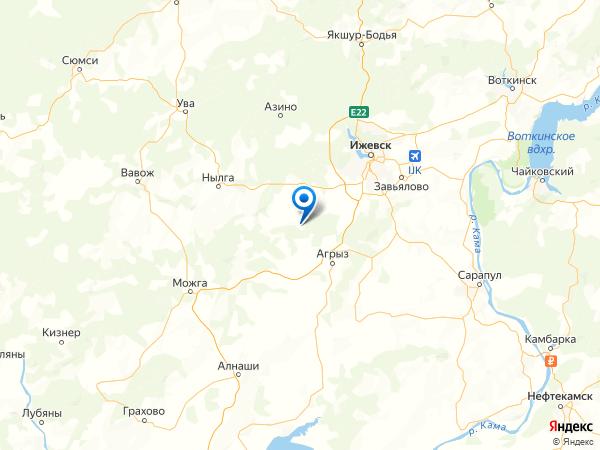 деревня Вишур на карте