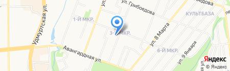 Кедр на карте Ижевска
