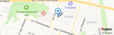 Дракоша на карте Ижевска