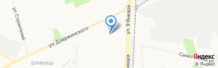 Тюльпан на карте Ижевска
