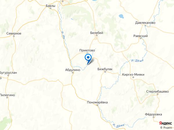 село Новый Биктяш на карте