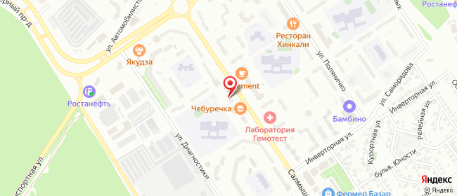 Карта расположения пункта доставки Оренбург Салмышская в городе Оренбург