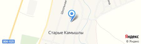 Дом культуры с. Старые Камышлы на карте Старых Камышл
