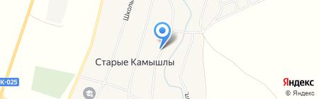 Магазин товаров повседневного спроса на карте Старых Камышл