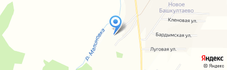 Красная гвоздика на карте Баша-Култаево