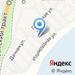Спутник на карте Чесноковки
