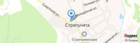 Муниципальная пожарная служба Стряпунинского сельского поселения на карте Стряпунят