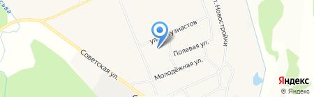 Стряпунинская сельская библиотека на карте Стряпунят