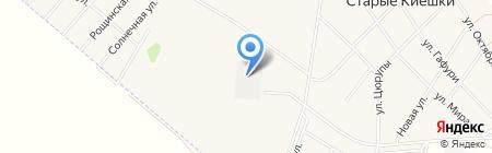 Виатэк на карте Старых Киешек