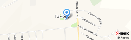 Виктория на карте Гамово