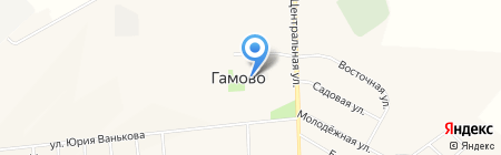Телец на карте Гамово