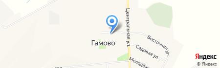 ЛапУшки на карте Гамово