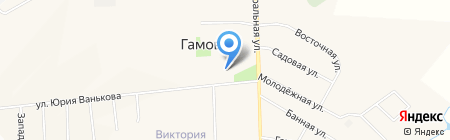 Мельница на карте Гамово