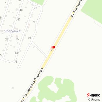 г. Пермь, ул. Леонова, на карта