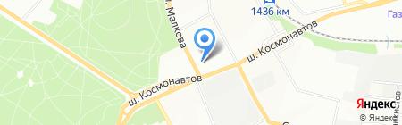 Виват на карте Перми