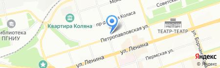 Кашалотик на карте Перми