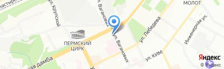 Барс на карте Перми