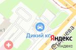 Схема проезда до компании Дикий кот в Перми