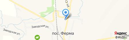Амелия на карте Ферма