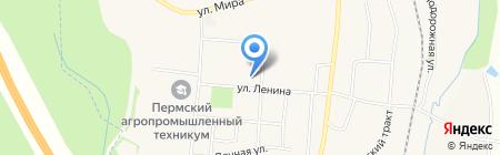 Софочка на карте Бершетя