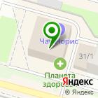 Местоположение компании Магазин ковровых изделий