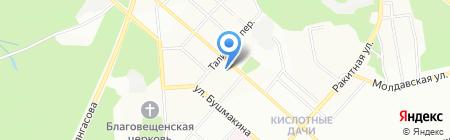 Чистый дом на карте Перми