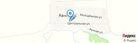 Ассорти на карте Авняша
