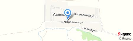 Авняшский фельдшерско-акушерский пункт на карте Авняша