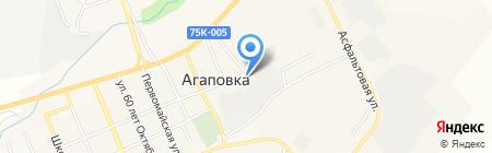 Агаповская районная ветеринарная станция по борьбе с болезнями животных на карте Агаповки