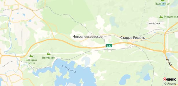Новоалексеевское на карте