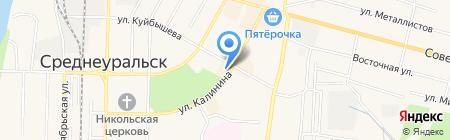 Питомец на карте Среднеуральска