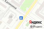 Схема проезда до компании Цветы и зайчики в Екатеринбурге