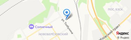 IT-Прогресс на карте Берёзовского