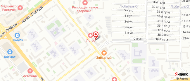 Карта расположения пункта доставки Westfalika в городе Челябинск