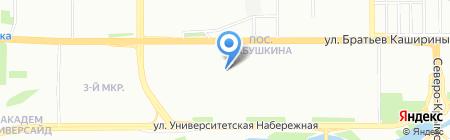 Lapki74 на карте Челябинска