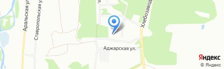 Анкур на карте Челябинска