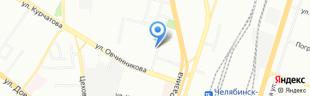 Пеликан на карте Челябинска