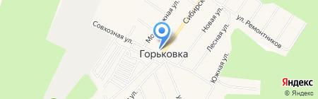 Горьковская амбулатория на карте Горьковки