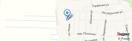 Афродита на карте Боровского