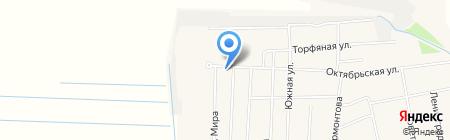 Марина на карте Боровского
