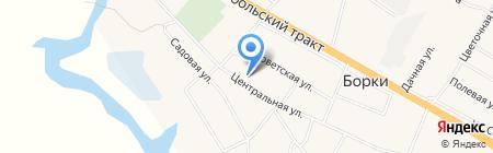 Фельдшерско-акушерский пункт на карте Борок