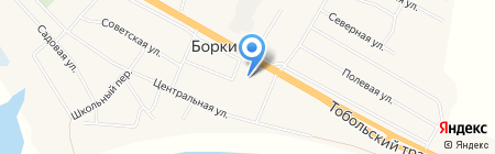 Колосок на карте Борок