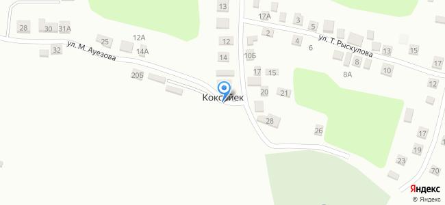 Казахстан, Туркестанская область, Толебийский район, село Коксайек