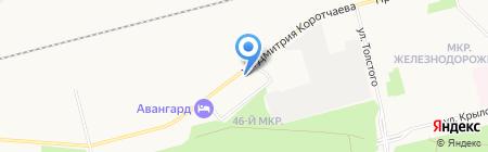 Доктор Айболит на карте Сургута