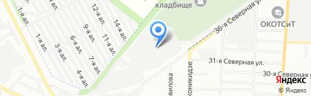 Борус на карте Омска