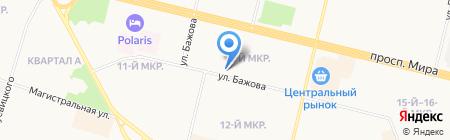 Багира на карте Сургута