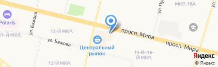 Магазин игрушек на карте Сургута