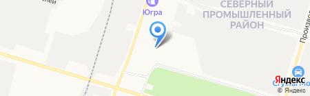 Алтайская сосна на карте Сургута