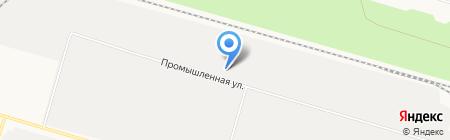 Беркут на карте Сургута