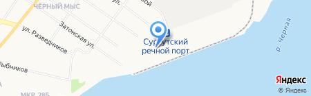 Пингвин на карте Сургута